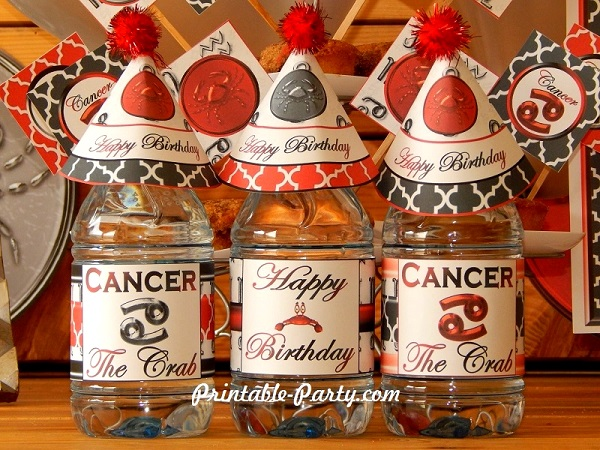 Zodiac Signs Party Decorations