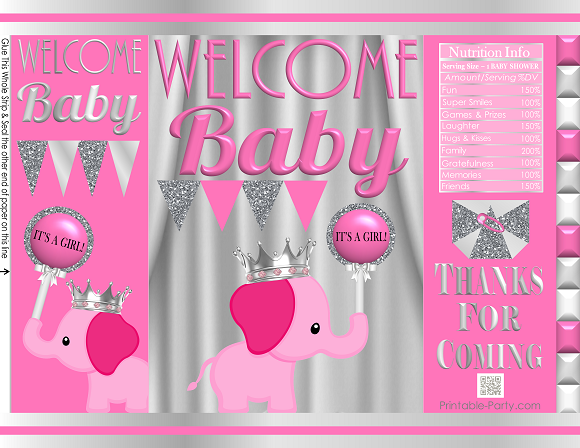 Baby Shower Gift Bags Printable Potato Chip Bags Party