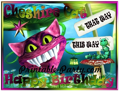 Wonderlands Cheshire Cat Party Supplies – Cat Birthday Invitations